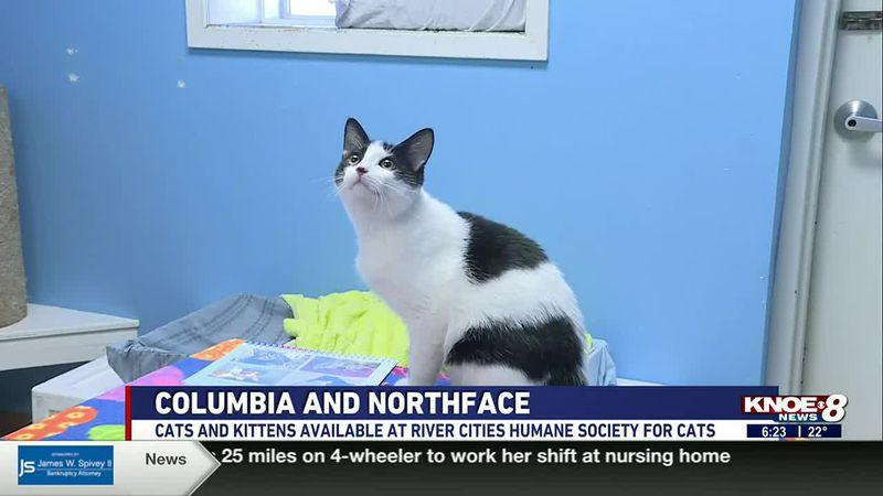 In this Adopt a Pet segment, we're meeting siblings Columbia and Northface at River Cities...