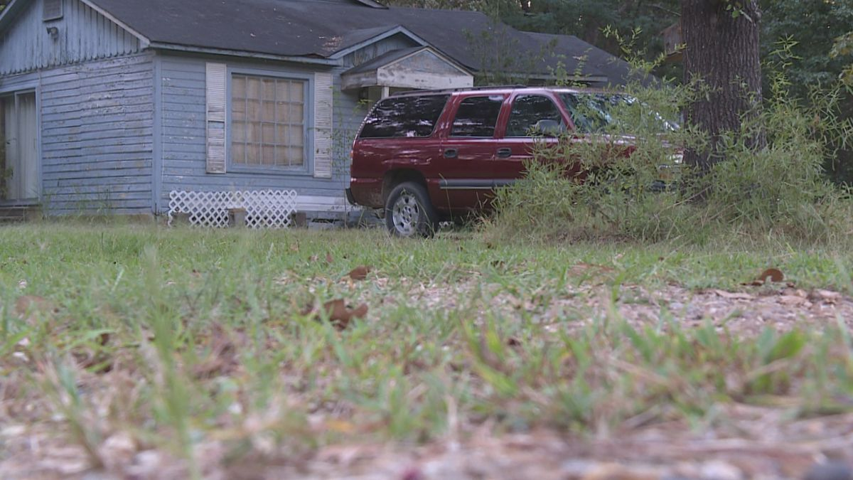 A Morehouse Parish woman is recovering after she was attacked by two pit bulls this week. (Source: KNOE)