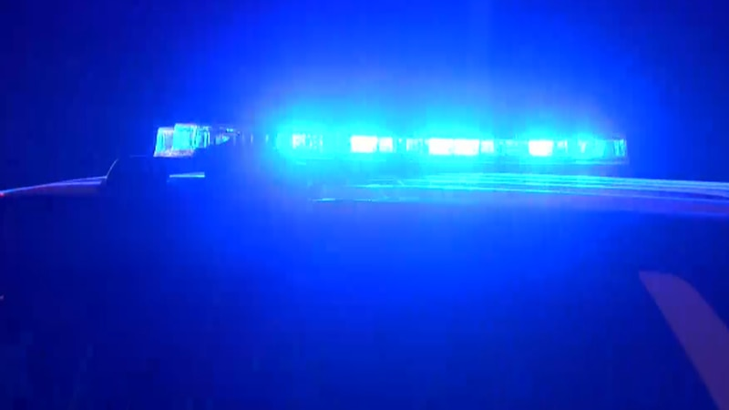 Since the beginning of January there have been 11 homicides in Roanoke city.