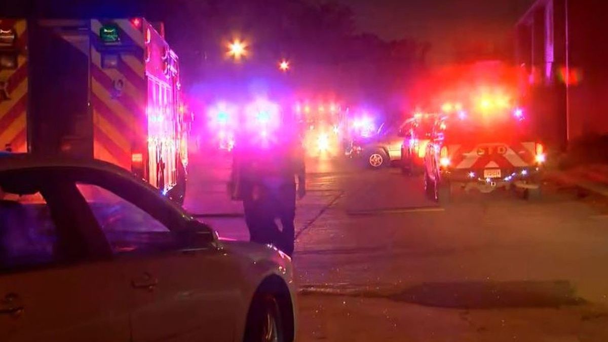 A toddler was shot in the back of her head. (Source: KSLA)