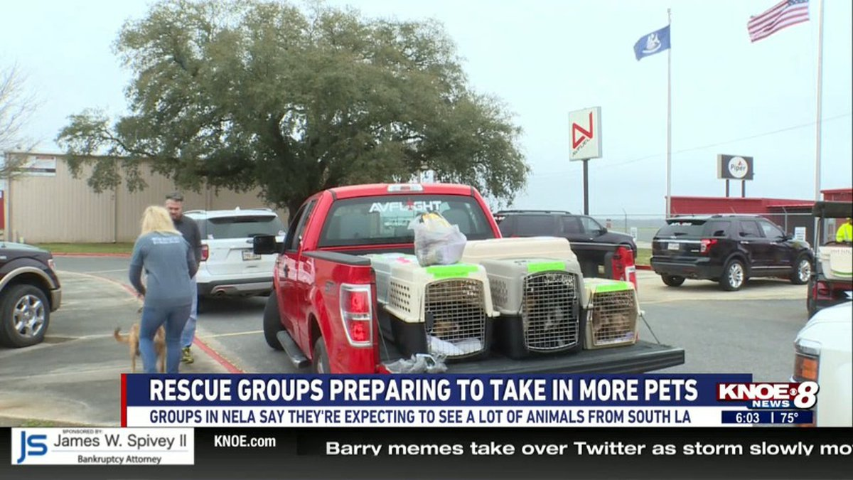 Rescue groups here in Northeast Louisiana are preparing to take in pets that were displaced...