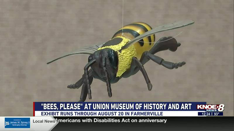 """""""Bees, please"""" at Union Museum of History and Art"""