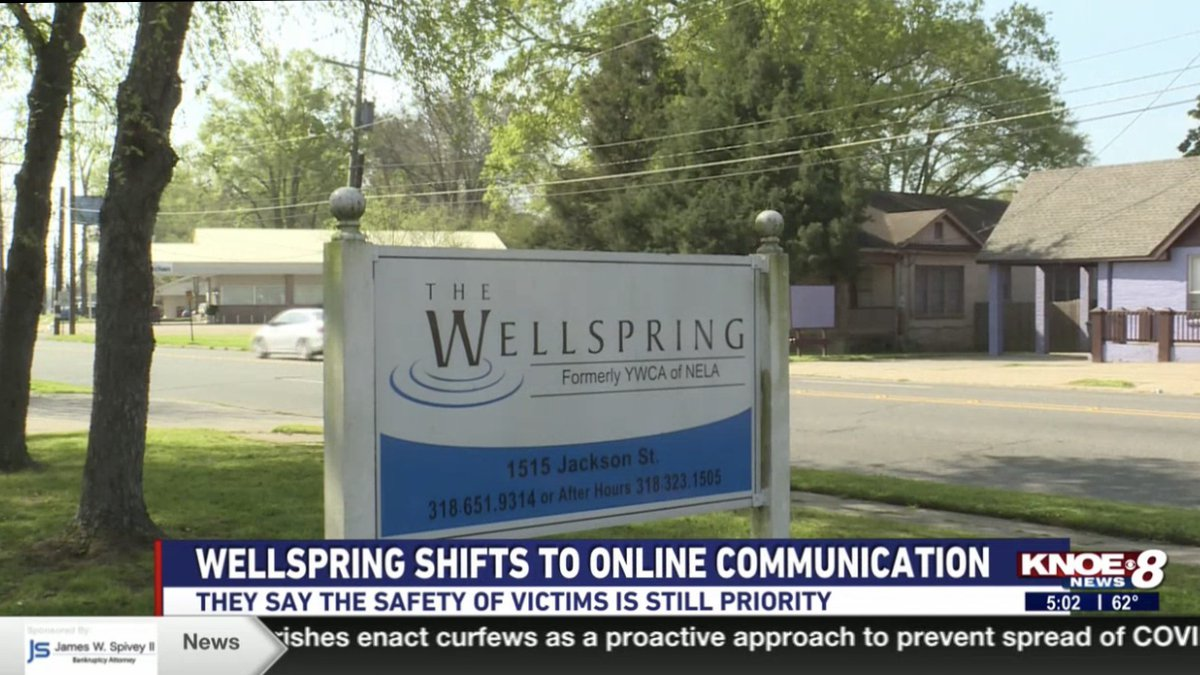 The Director of the Domestic Violence Program at The Wellspring said that because domestic...