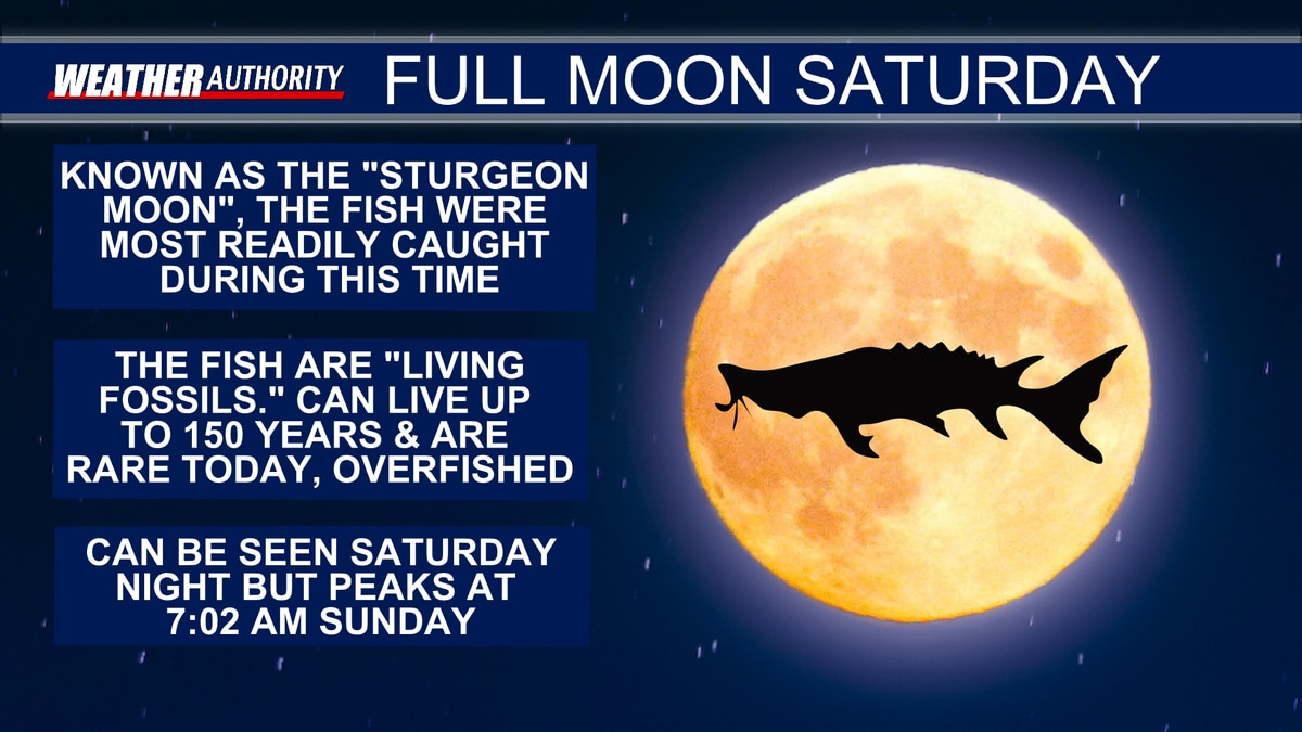 The Sturgeon Moon will peak at 7:02 AM on Sunday.